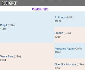 Purple Sky pedigree
