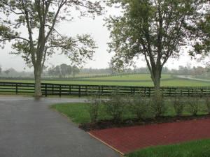 WinStar Farm