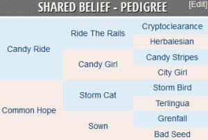 shared belief pedigree
