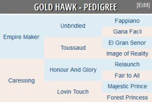 gold hawk pedigree