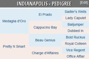 Indianapolis horse pedigree