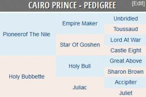 Cairo Prince bloodlines