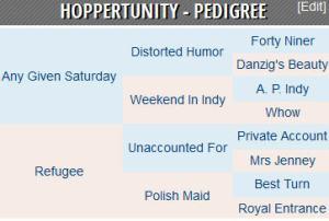Hoppertunity pedigree