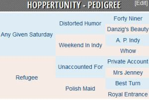 Hoppertunity pedigree