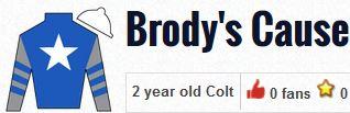 brody's cause silks