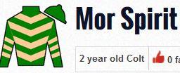 mor spirit silks