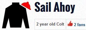 sail ahoy silks