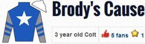 brody's cause silks 2016