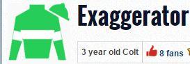exaggerator silks